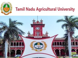 Tnau Recruitment 2020 Apply Online For Junior Assistant Post At Tnausms In